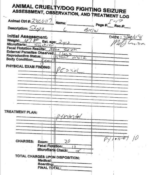 BJC Seizure Asses Observ Treat Log 072908