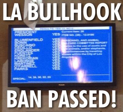 LA Bullhook Ban Passed 10232013
