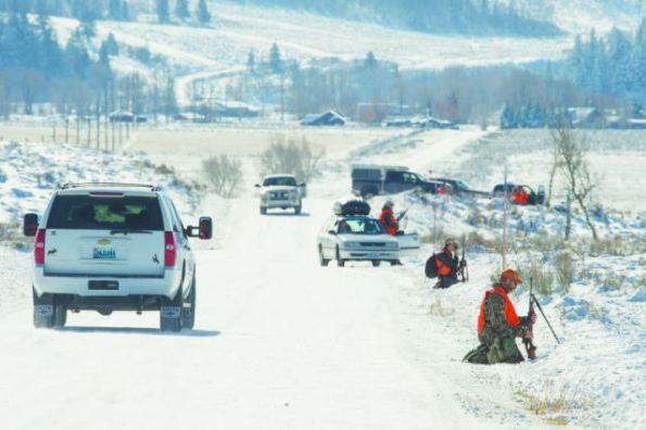 Thomas D. Mangelsen A crowd of hunters participating in the Teton park hunt herded elk from a no-hunting area into a barrage of bullets on Wednesday, upsetting nonhunting passersby.